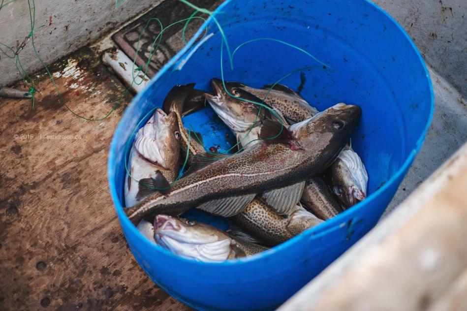 Kim+LEO FISHING_0030